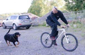 sykkelkartleggingPSLiten